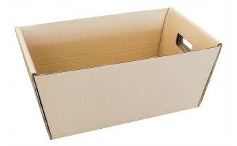 Cardboard carrying box with cut out handles